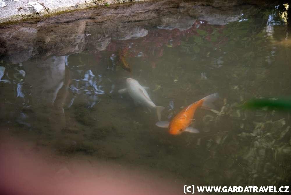 garda-gardone-heller-garden-10